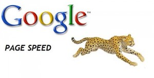 steps-to-optimize-your-website-load-time_google_page_speed