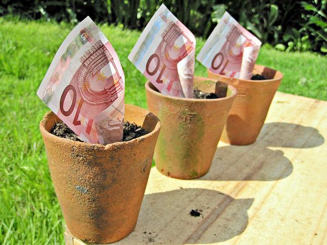 Billetes de 10 euros en una maceta